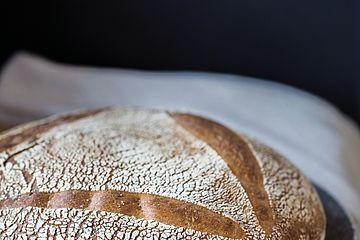 Brot Weizenbrot PrimaPan, Südback 2017